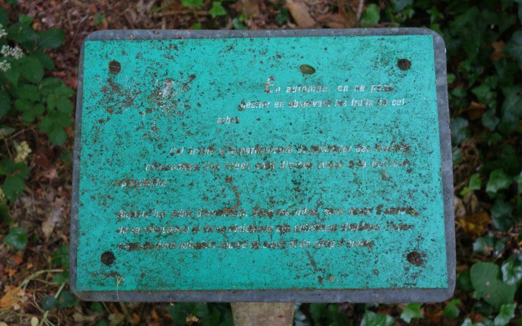 jean-pierre balpe texte à interpréter